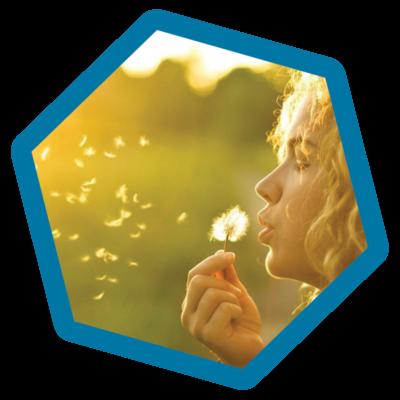 pollen-star